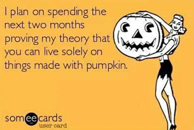 Reasons Fall is the Best