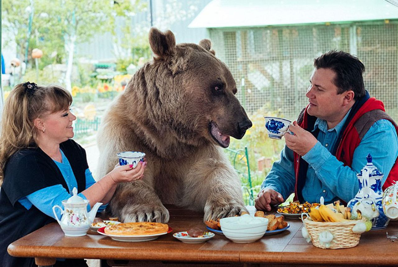 Russian couple adopted a bear