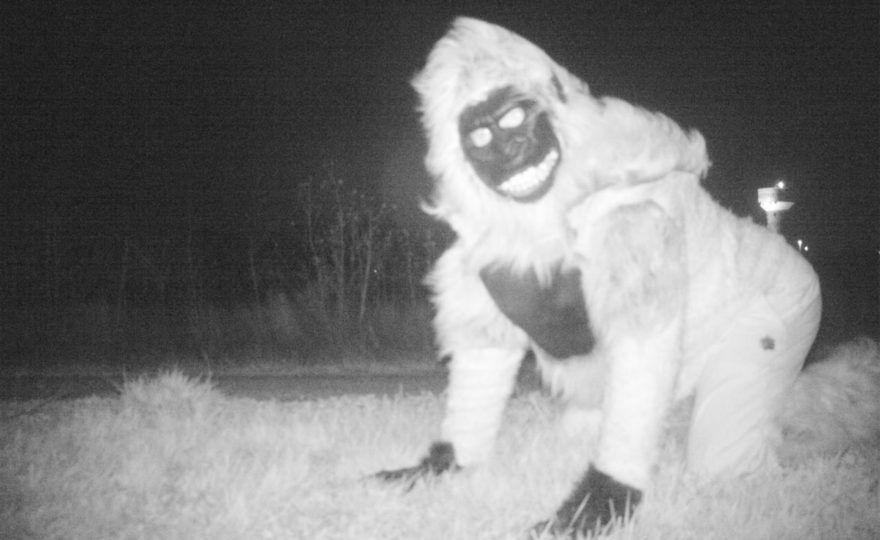 creepy trail cam photos